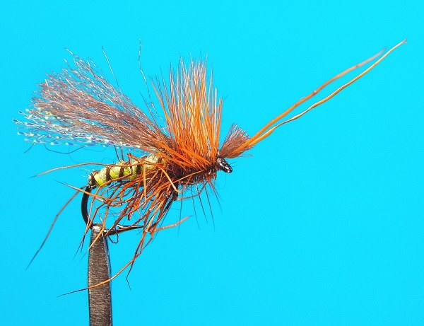 Gangsta caddis