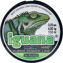 Balsax Iguana