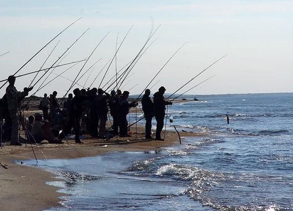 ловля рыбы на берегу черного моря видео